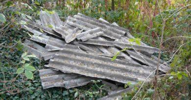 Bomba ecologica sul Gargano, Stea chiede vertice istituzionale
